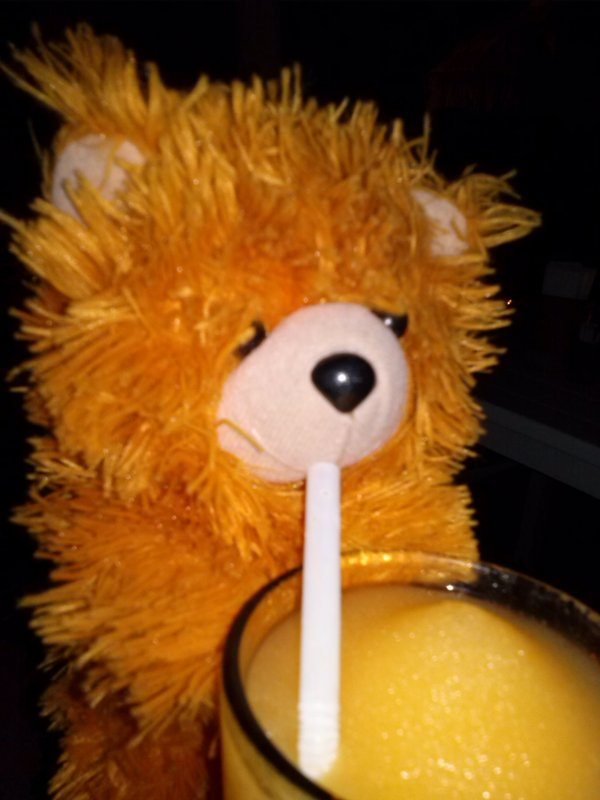 The Adventure of Teddy Panda in Gili Trawangan (5/6)