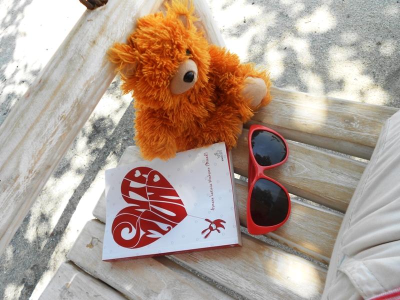 The Adventure of Teddy Panda in Gili Trawangan (6/6)