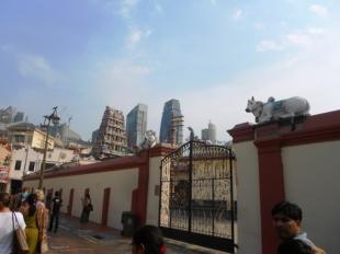 3. Chinatown 2 (5)