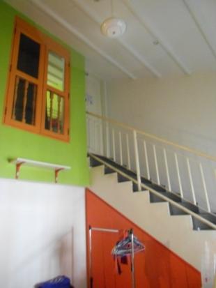 4. A Beary Good Hostel (9)
