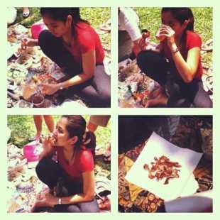 piknikasik nyinyirs (1)