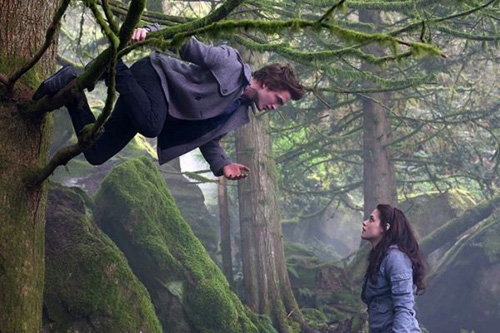581630-edward_bella_tree_hanging