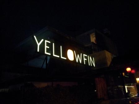 Yellowfin (10)
