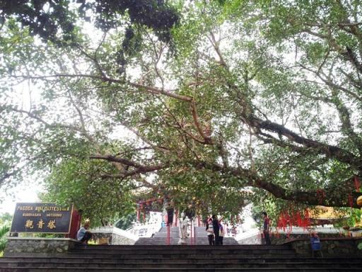 8. pagoda watugong (25)