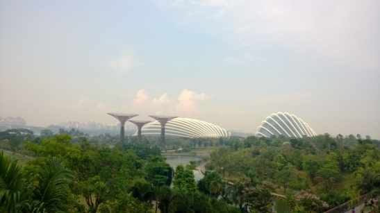 4. Gardens by the Bay (13)