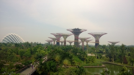 4. Gardens by the Bay (14)