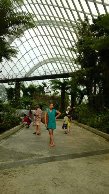 4. Gardens by the Bay (23)