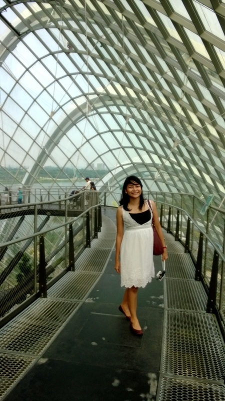 4. Gardens by the Bay (30)