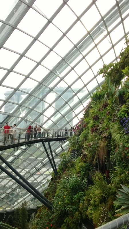4. Gardens by the Bay (32)