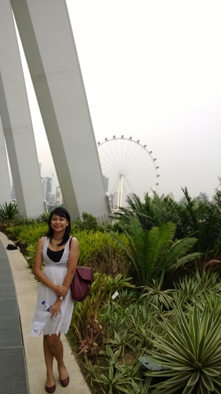 4. Gardens by the Bay (41)
