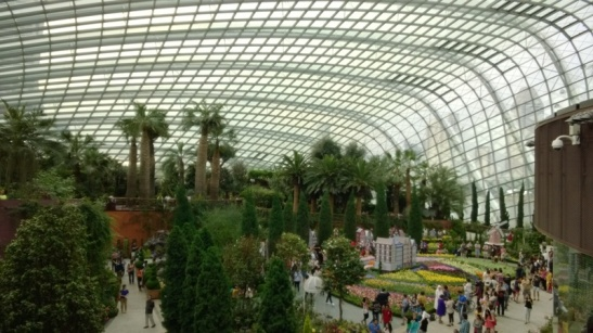 4. Gardens by the Bay (46)