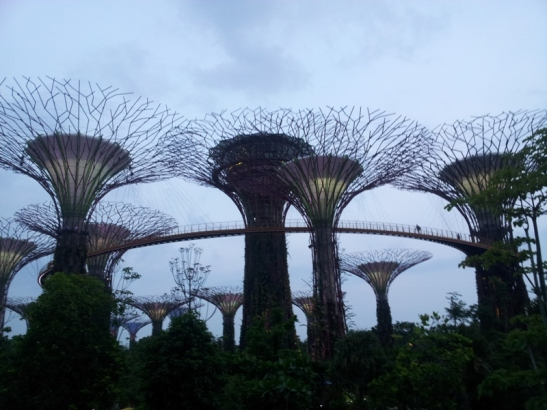 4. Gardens by the Bay (9)