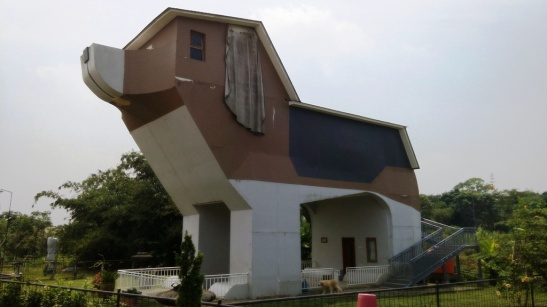 Dog House (5)