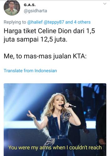 celinedionmeme (13)