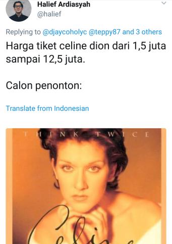 celinedionmeme (25)