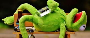alkohol-og-gambling_Stor_kermit